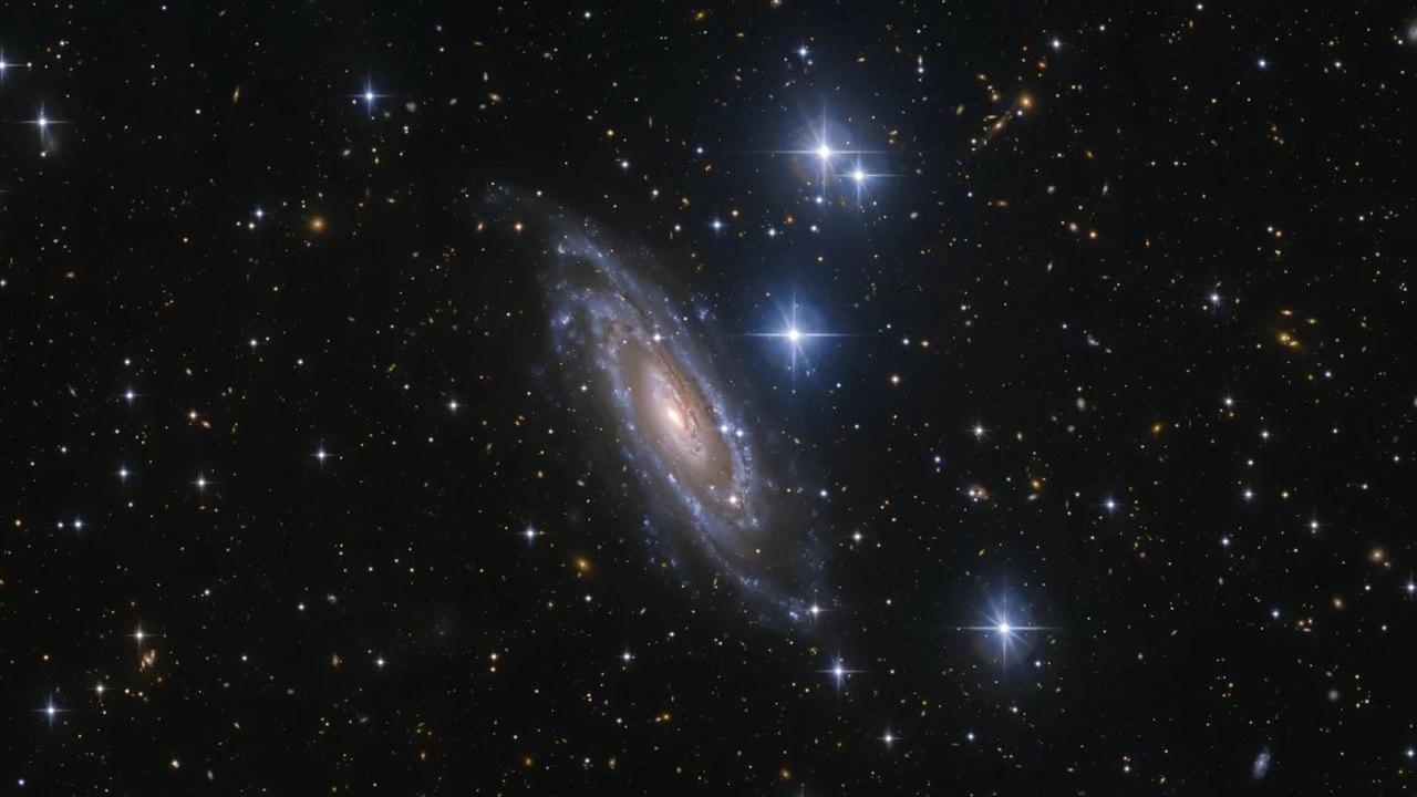 Галактика NGC 1964